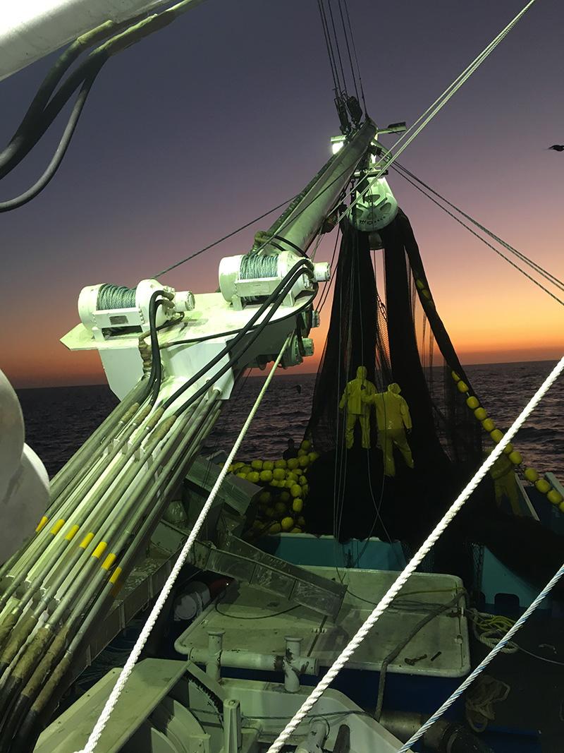 Haladores Puretic Power Block para Sardineros