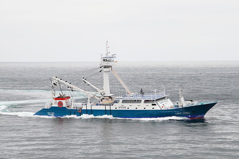 Tuna vessels